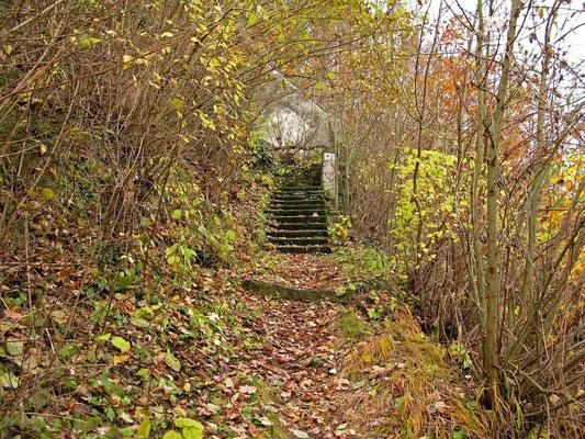 © Traudi  -  ... steil bergan und rutschig durch feuchtes Laub.