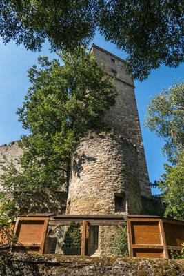 © Traudi - Burg Guttenberg