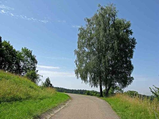 © Traudi – Burg Waldenstein - kleiner Spaziergang