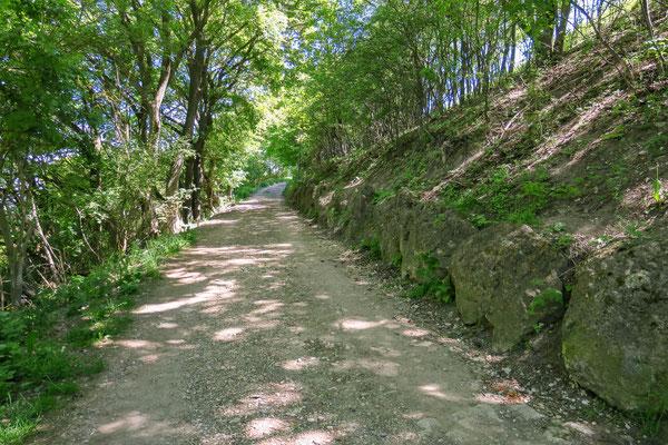 © Traudi - gemütlicher Weg hinauf zur Burgruine