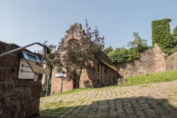 © Traudi - ...und hier gehts zur Karmeliterklosterkirche