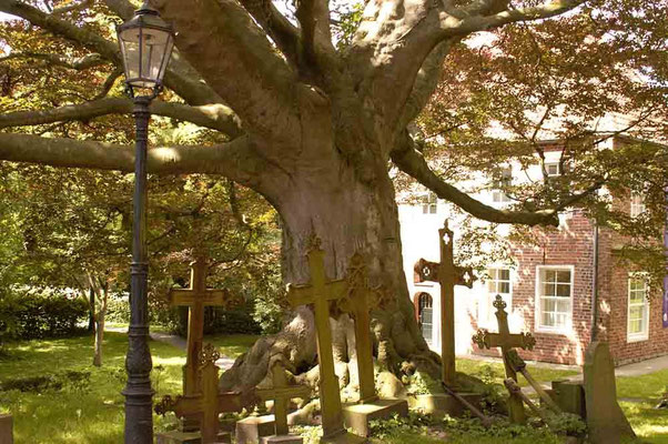 Vor der Kirche in Dornum