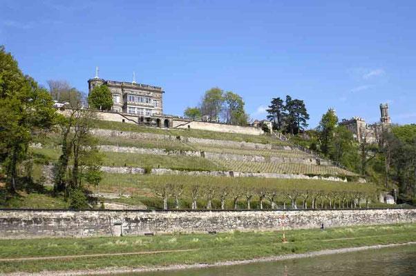 Foto 2004 (c) Traudi