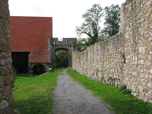 © Traudi – Ruine Nippenburg - Reste der Ringmauer und links die Burgscheuer neben dem Tor