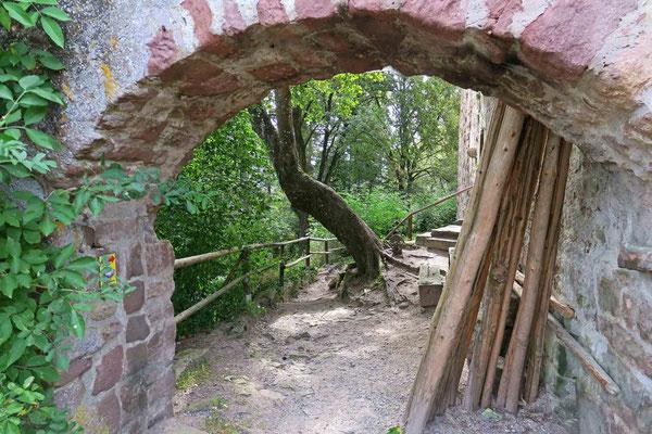 © Traudi - außerhalb der Mauer