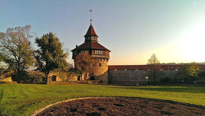 © Traudi - Burg, der Dicke Turm