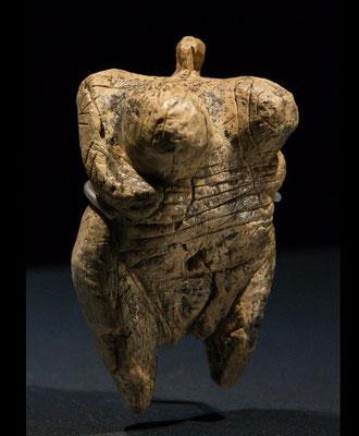 Venus - das Foto habe ich mir von Wikipedia ausgeliehen