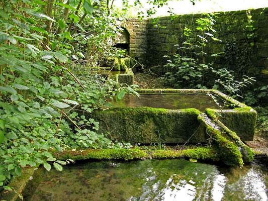 Kloster Denkendorf, Quelle neben dem Teich - © Traudi