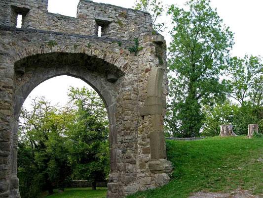 © Traudi – Ruine Nippenburg,