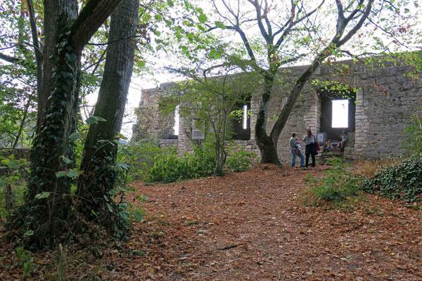 © Traudi - Endlich habe ich das frühere Burgareal oben auf dem Plateau erreicht.