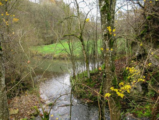 © Traudi  -   ........ und mündet in den Fluss Bühler