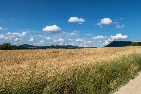 © Traudi - weiß-blauer Himmel