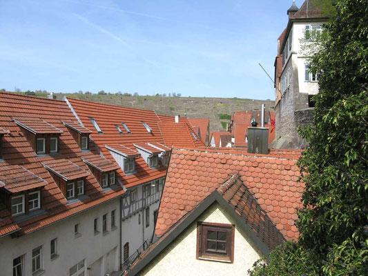 ©Traudi  / *schnauf* - oben angekommen.  Über den Dächern...