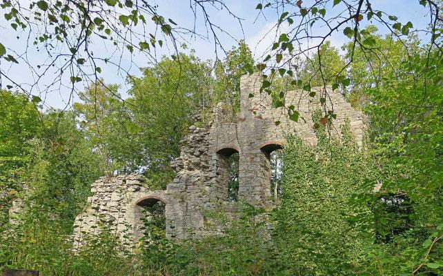 © Traudi - Mauerreste überwachsen mit Bäumen und Büschen