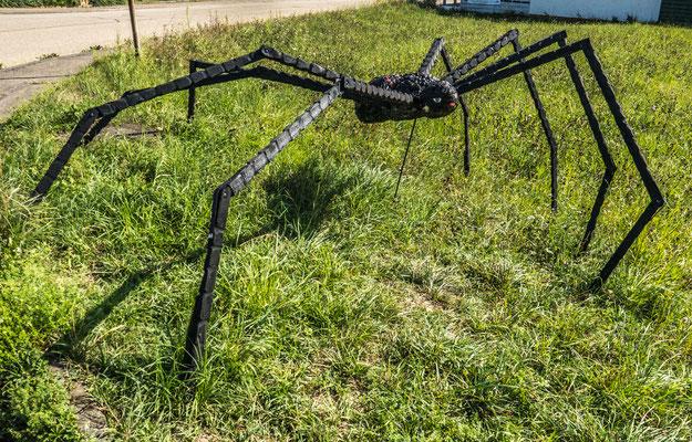 """© Traudi - Die schwarze Spinne. Spinnen machen überall Netze. Man kann sie auch """"Traumfänger"""" nennen."""