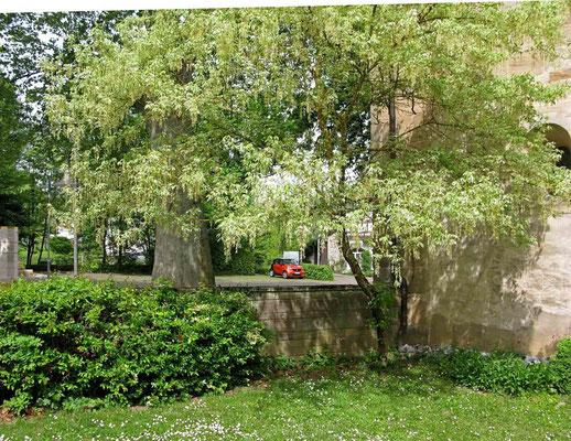 Kloster Denkendorf, -  © Traudi
