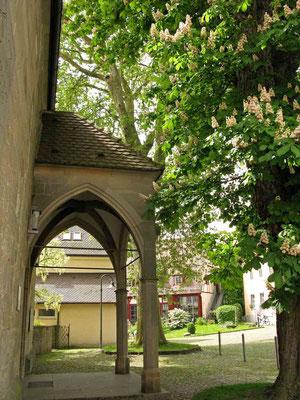 Kloster Denkendorf, Kastanienblüge am Eingang zur Kirche - © Traudi