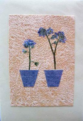 Foto  (c) Traudi  Vergissmeinnicht-Blüten in Tapetenrest-Töpfchen und -Hintergrund