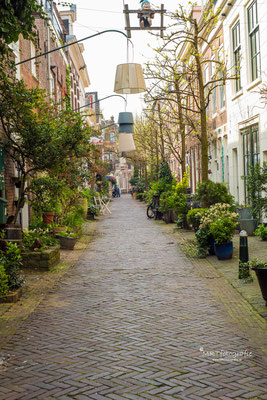 Korte Houtstraat Haarlem