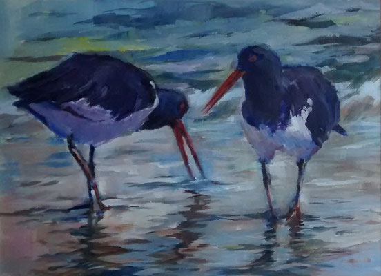 David Monk 'Oystercatchers'