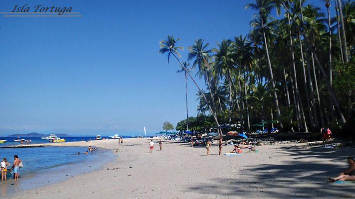 Tour a Isla Tortuga
