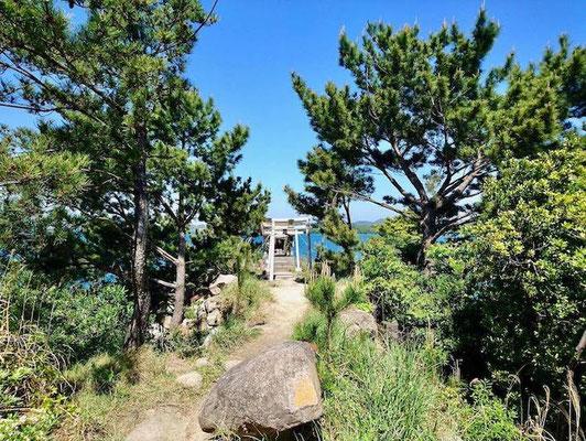 社殿への道 Path to the Shrine