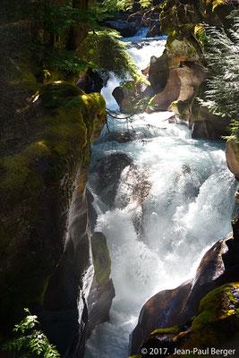 Glacier Park -