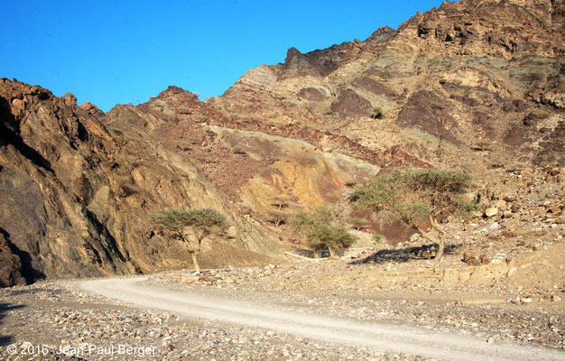Wadi Khub _Chert rouges et verts (radiolarites)