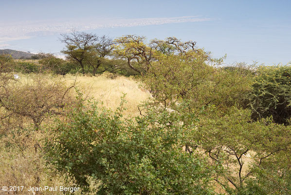 Descente du Jebel Samhan - Vue sur la plaine côtière et Mirbat