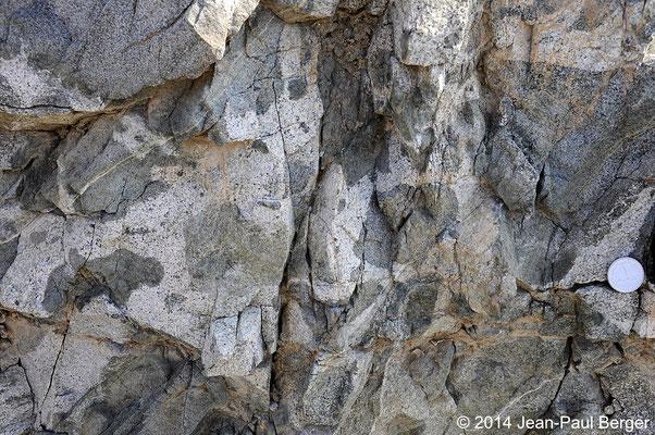 Filon de Vinaigrette  et Tonalite - Monts Hajar - Région de Sahaynah - Fashrah