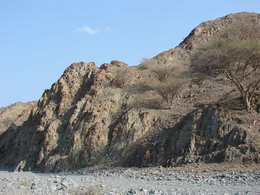 Complexe filonien - Succession de dykes (Région de Wahala)
