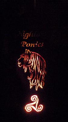 Stimmungsvolle Beleuchtung auf der Breedshow 2012 // (c) Seraphin