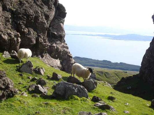Isle of Skye // (c) Haas