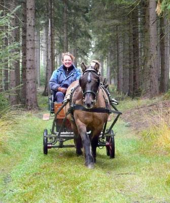 Rhum Primrose IV mit ihrer Besitzerin Anke Hoffmann // (c) Dittelbach