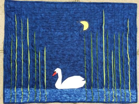 Schwan bei Nacht, 60 x 80