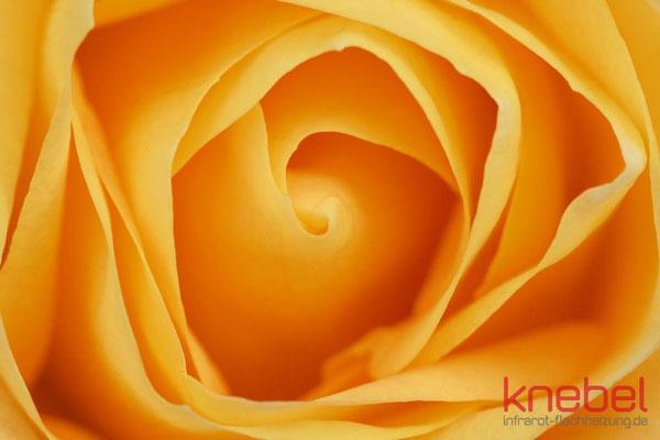 Infrarotheizung Bildheizung Knebel - Motiv