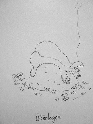 Bären Zeichnung_50