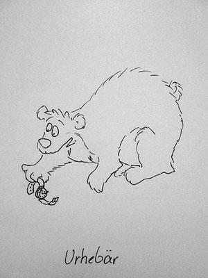 Bären Zeichnung_49