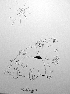 Bären Zeichnung_38