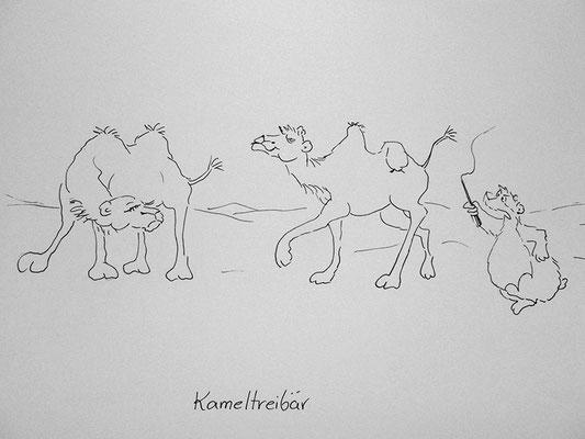 Bären Zeichnung_65