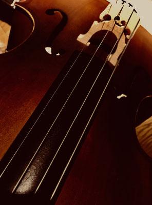 Sinnliches aus den Rundungen eines Cellos