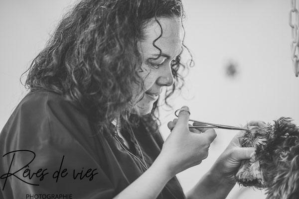 portrait professionnel, photographe Yonne, mise en valeur professionnelle, entreprise