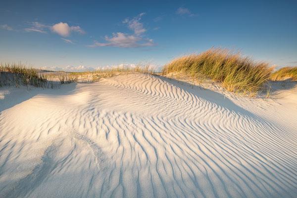 Avondlicht op helmgras in duinen - Noordzeestrand Terschelling © Jurjen Veerman
