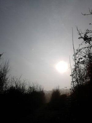 Brumes et brouillards Christelle Lefait