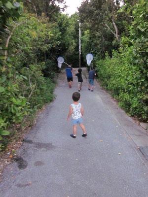 早速ヨータは宿の子たちとヤドカリ狩りへ