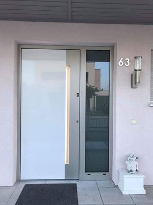 Alu Haustür 25