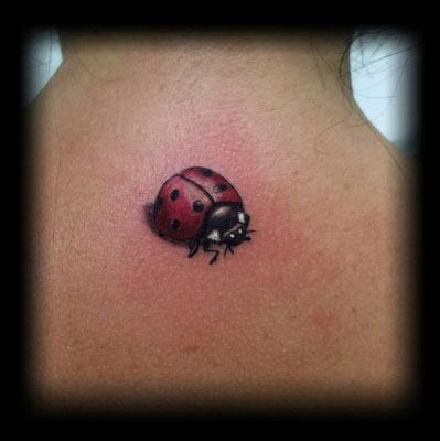 ladybug tattoo, tattoo mariquita