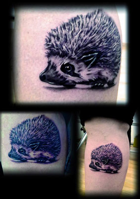 hedgehog tattoo, tattoo erizo
