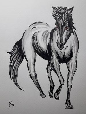 Pferd im leichten Trab