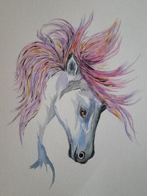 Crazy Horse - unverkäuflich...